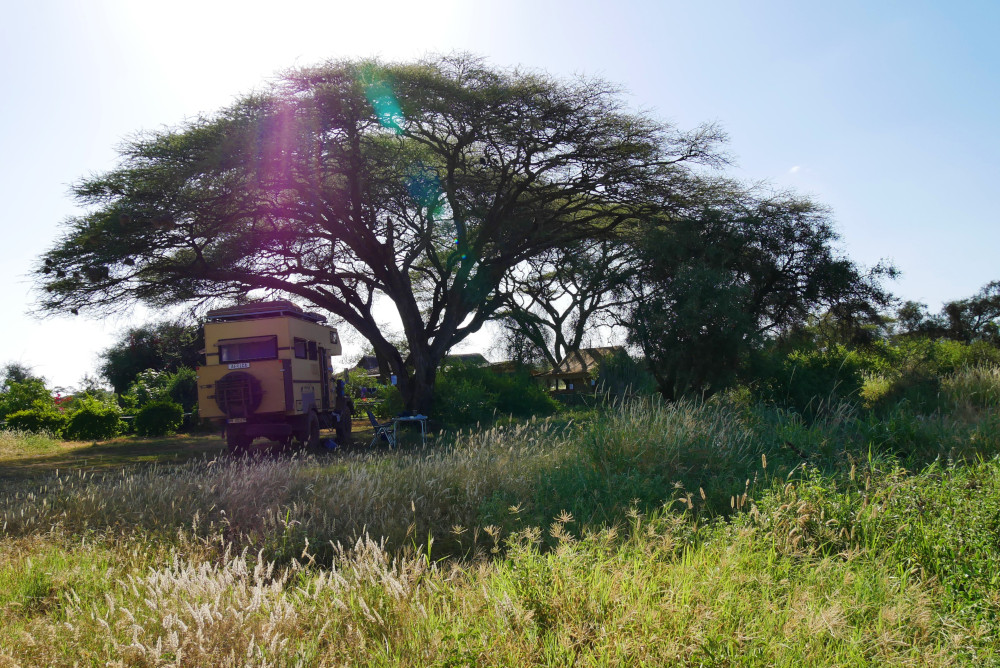 Mausejagt und Fahrt zum Amboseli Nationalpark