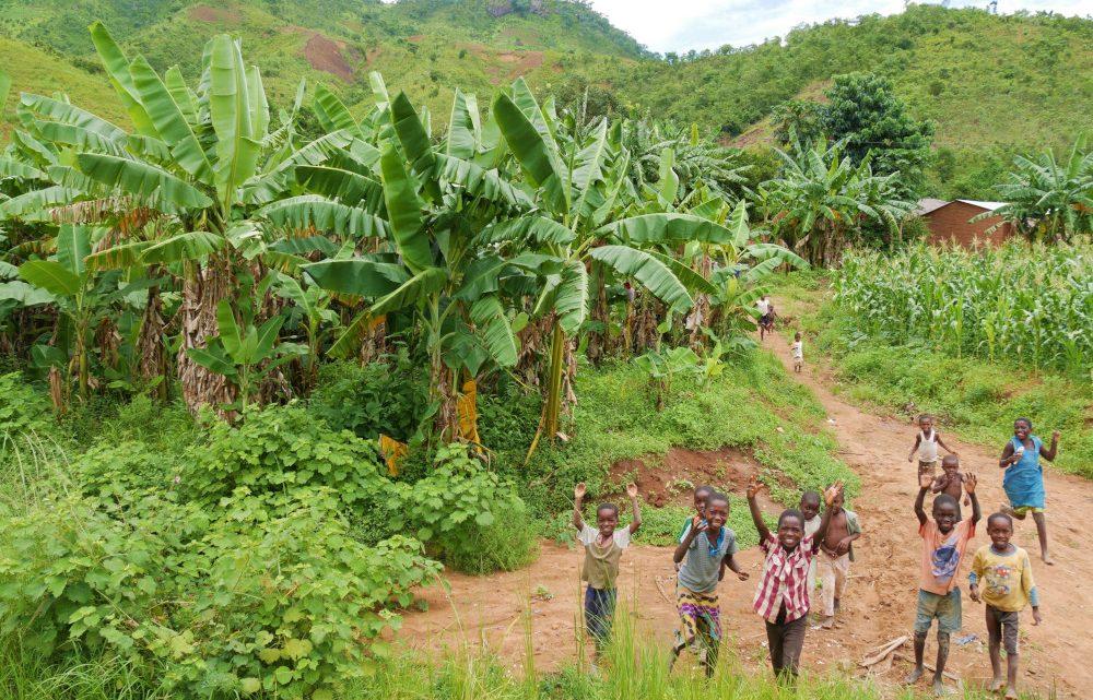 Das dritte Land Malawi