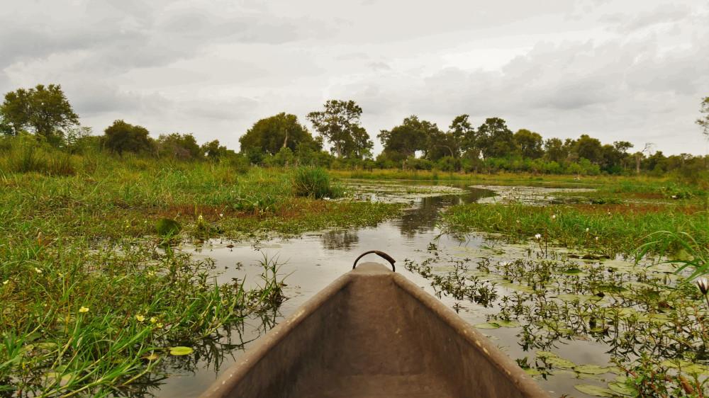 Das Okavango Delta