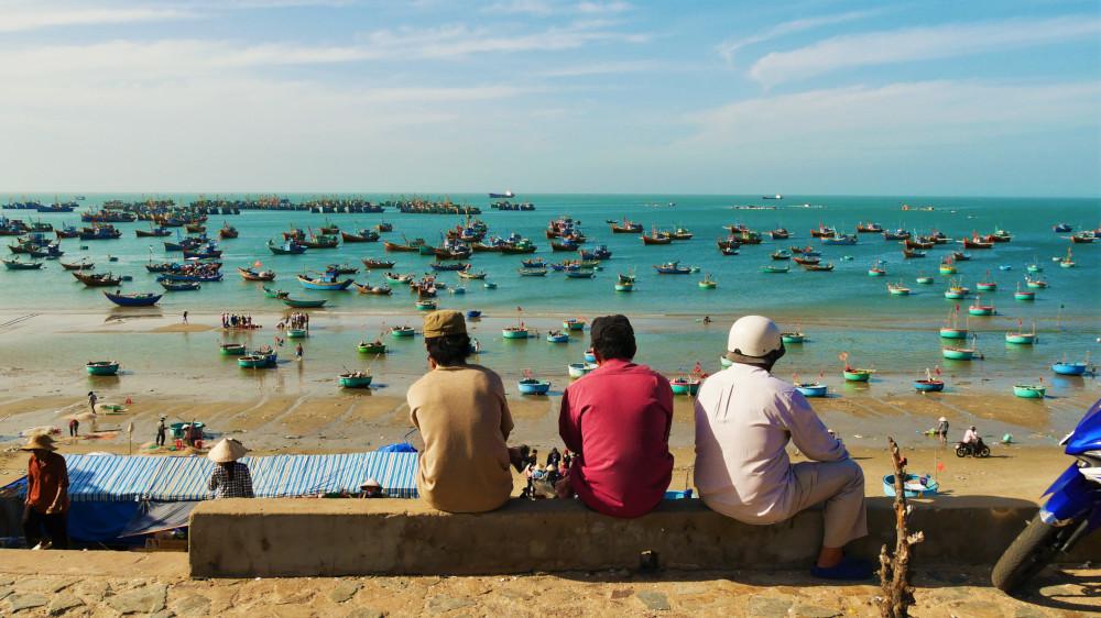 Workaway in Vietnam